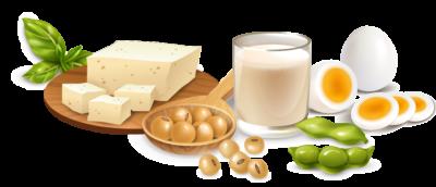 優質蛋白質來源